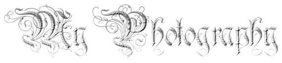 my photography in a gothic font